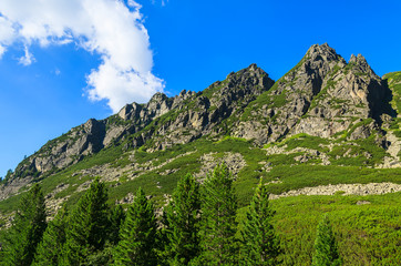 Summer green scenery in High Tatra Mountains, Slovakia
