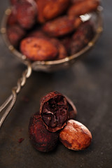 roasted cocoa chocolate beans
