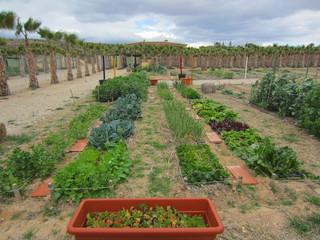 ecological organic gardening
