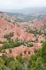 Badlands and conifer forest in High Atlas, mount Toubkal area