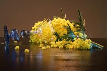 Mimose sul tavolo