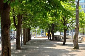 大阪 駅ビル前の歩道