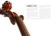 Violin - 79929484