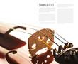 Violin - 79929494