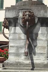 Fontana con teste di leone e serpente, Stia