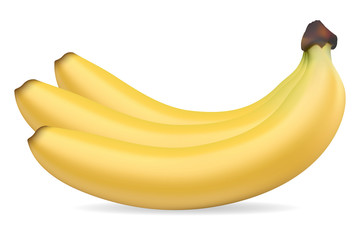 bananas vector illustration
