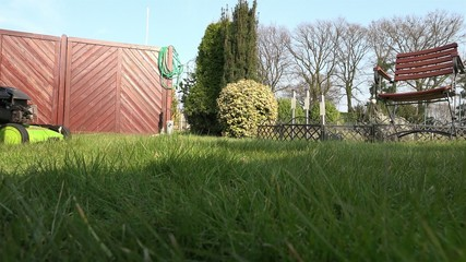 Mowing Lawn - Cutting grass