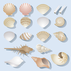 Sea Shell Objects Set