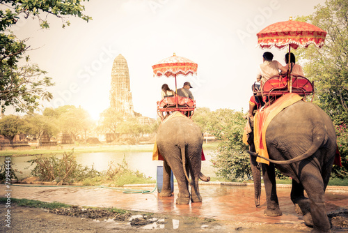 Deurstickers Overige Elephants in Ayutthaya