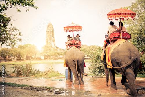 Poster Elephants in Ayutthaya