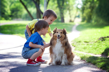 Two adorable boys, brothers, caressing cute dog in the park