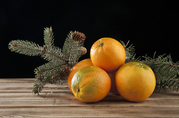 oranges and branches of fir-tree