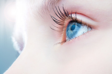 Macro close up of human eye.