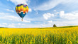 Hot air balloon over yellow flower fields against blue sky - 79948288