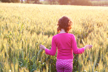 back side of happy kid looking at the sunset in wheat field , ex