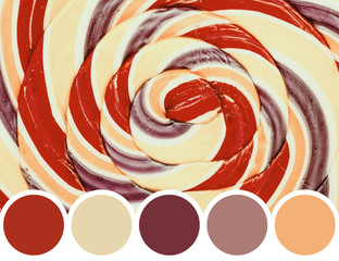 Color Palette Of Lollipop Abstract