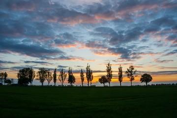 Beautiful sunset sky over trees
