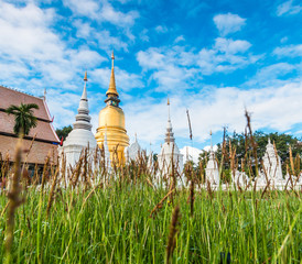 Ancient pagoda at Wat Suan Dok in Chiangmai province of Thailand