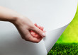 Hand pulling a paper corner to uncover, reveal green landscape