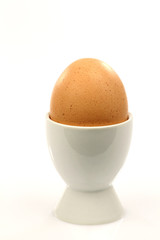 one white eggcup with a brown egg on a white background