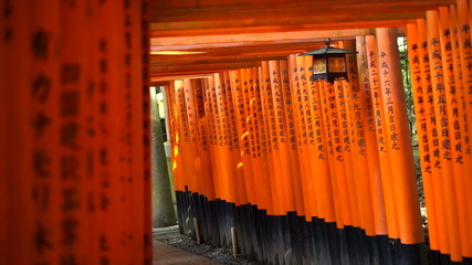 red gate torii at Fushimi Inari temple shrine in Kyoto, Japan