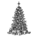 Christmas tree on a white background. sketch