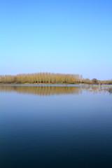 étang en hiver