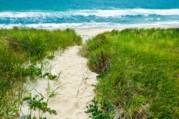 Sandy path to a beach and turquoise ocean
