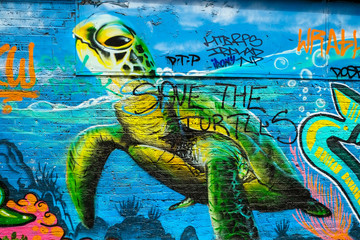 Green Turtle Graffiti