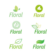 floral set of leaf green eco icons