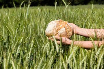 Getreide zu Brot