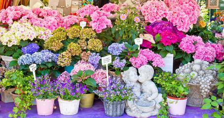 Bunte Blumen auf dem Markt in München