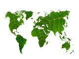 eco world map made of green leaves