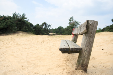Empty wooden bench