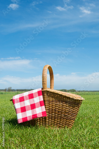 Picnic basket in nature - 79976487