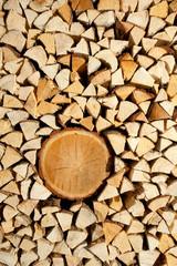 Holzscheiter mit Baumstamm - Hochformat