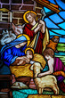 Stained Glass - Nativity Scene at Christmas - 79977883