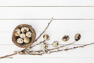 Easter quail eggs in nest and willow branch on wooden background