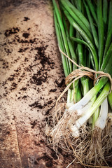 Spring onion on wooden board