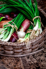 Basket of onions with rustic background