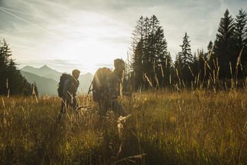 Österreich, Tirol, Tannheimer Tal, junges Paar wandert im Sonnenlicht auf Almwiese