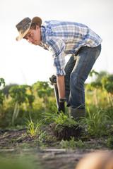 Junger Mann gräbt auf dem Feld