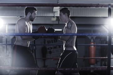 Zwei Boxer beginnen einen Kampf