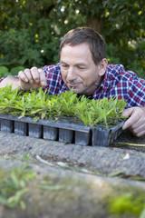 Deutschland, Sachsen, Älterer Mann mit Pflanzen
