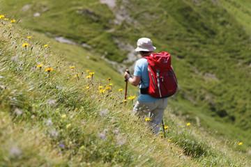 Österreich, Kärnten, Karnischen Alpen, weibliche Wanderer