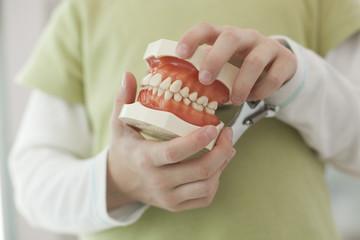 Deutschland, Bayern, Landsberg, Kind hält Modell der Zähne