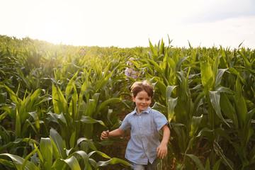 Zwei Kinder in einem Maisfeld
