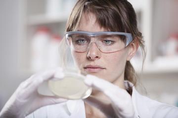 Deutschland, Bayern, München, Wissenschaftler mit Petrischale im Labor