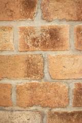 Brick wall background texture - vintage