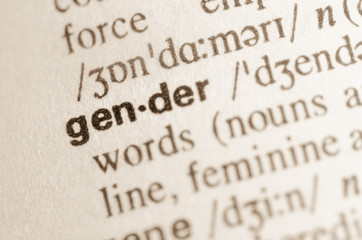 Dictionary definition of word gender
